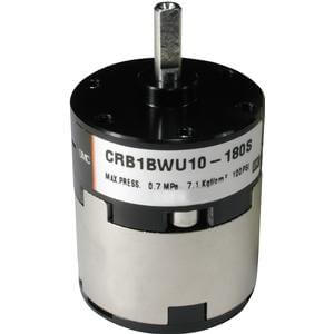 EC(D)RB1*W10~30, Rotary Actuator, Vane Style