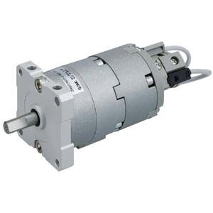 C(D)RBU2*U10~40-Z, Rotary Actuator, Free Mount w/Angle Adjuster, Vane Type